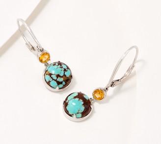 Generation Gems Gemstone & Cabochon Sterling Silver Earrings