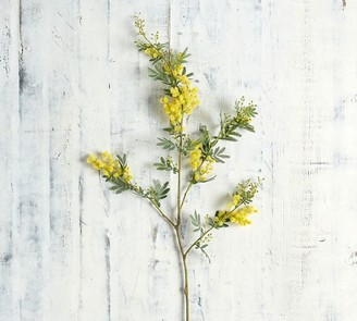 Pottery Barn Faux Acacia Branch - Yellow