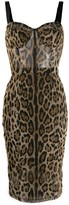 Dolce & Gabbana leopard print fitted dress