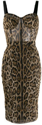 Dolce & Gabbana Leopard Print Fitted Dress