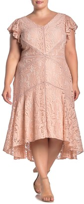 Taylor Flutter Sleeve High/Low Lace Dress (Plus Size)