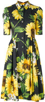 Dolce & Gabbana sunflower shirt dress - women - Cotton - 40