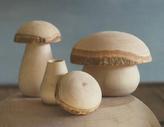 Cargo Mushroom Box