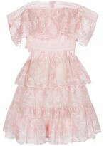 Thumbnail for your product : Self-Portrait Floral embroidered organza minidress