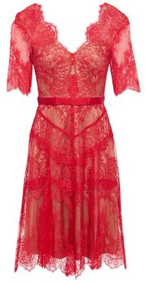 Catherine Deane Neroli Grosgrain-trimmed Chantilly Lace Dress