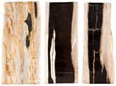Jayson Home Petrified Wood Slab