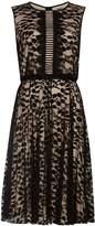 Phase Eight Lucinda Dress