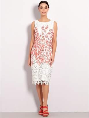 M&Co Floral lace shift dress