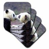 3drose Baby Pandas Ceramic Tile Coaster, Set of 4