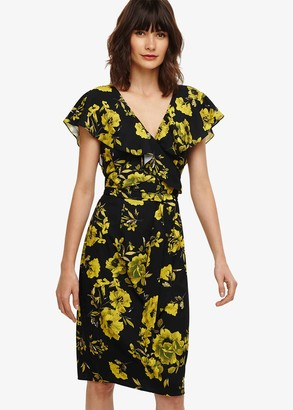 Phase Eight Heidi Floral Dress