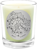 Qualitas Candles Black Currant Scented Candle