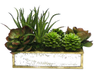 Bougainvillea Artificial Succulents In A Short Wooden Rectangular Container