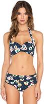 Seafolly Cabana Rose Halter Bikini Top