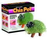 Chia Pet Handmade Decorative Planter, Puppy, 1 Kit