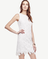 Ann Taylor Floral Lace Shift Dress