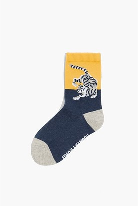 Country Road Tiger Placement Sock