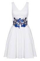 Quiz White And Blue Satin Floral Print Skater Dress