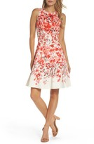 Maggy London Women's Print Stretch Cotton Dress