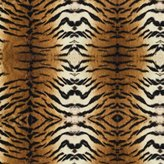 Camilla And Marc SheetWorld Fitted Bassinet Sheet - Tiger - Made In USA - 15 inches x 32 1/2 inches (38.1 cm x 82.6 cm)