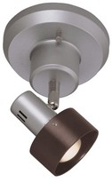 Lite Source Duccio 1 Light Wall/Semi-Flush Mount Ceiling Light - Silver