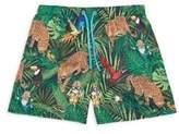 Dolce & Gabbana Baby's, Toddler's & Little Boy's Safari Swim Boxer Shorts