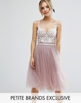 Chi Chi London Petite Chi Chi Petite Contrast Lace Corset Top Tulle Skirt Prom Dress