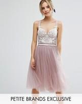 Corset Evening Dresses - ShopStyle