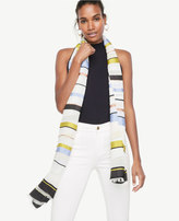 Ann Taylor Mixed Stripe Scarf