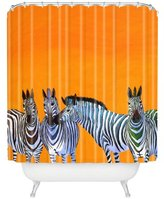 "Deny Designs Clara Nilles Candy Stripe Zebras Shower Curtain, 69"" x 72"""