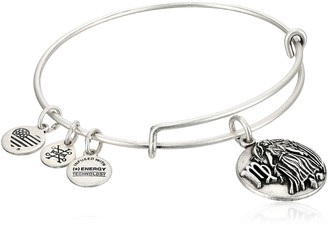 Alex and Ani Virgo Rafaelian Silver Bangle Bracelet