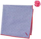 Alara Exporatorium Pocket Square & Lapel Pin Set