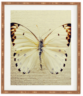 DENY Designs All White by Chelsea Victoria (Framed)