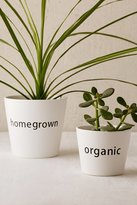 Urban Outfitters Homegrown Planter