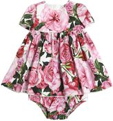 Dolce & Gabbana Roses Cotton Poplin Dress & Diaper Cover