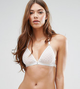 Wolfwhistle Wolf & Whistle Spot Mesh Crochet Trim Triangle Bra
