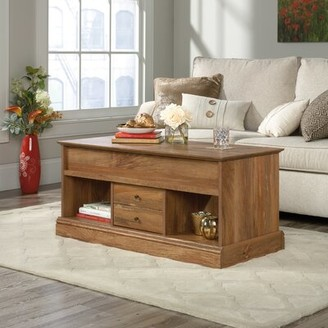 Union Rustic Schuh Lift Top Floor Shelf Coffee Table with Storage