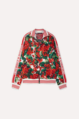 Dolce & Gabbana Intarsia-trimmed Floral-print Crepe Track Jacket - Red