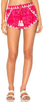 Rococo Sand Embroidered Shorts in Pink. - size L (also in S,XS)