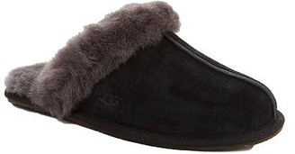 UGG Scuffette Slippers