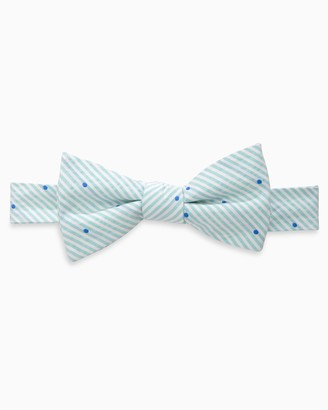 Southern Tide Charleston Dot Bow Tie
