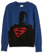 Gap GapKids + JunkFood DC Comics© intarsia sweater