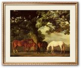 "Art.com Green Pastures"" Framed Art Print by George Stubbs"