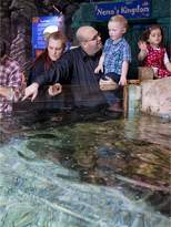 Virgin Experience Days Visit To Sea Life London Aquarium For Two Adults And Two Children