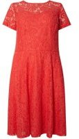 Dorothy Perkins Womens DP Curve Plus Size Red Lace Midi Fit And Flare Dress- Red