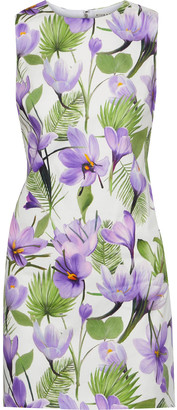 Alice + Olivia Coley Floral-print Cotton-blend Mini Dress