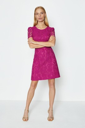 Coast Cap Sleeve Lace Short Dress