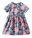 Hot Baby Dress! AMA(TM) Toddler Kids Baby Girls Short Sleeve Flower Print Denim Princess Party Dresses (5/6T, Blue)