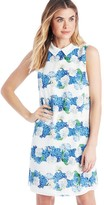 Sole Society Plaid Hydrangea Dress