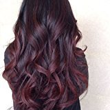 Fennell 8A Brazilian Human Hair Body Wave Burgundy Ombre Lace Front Wig With Baby Hair Human Hair Full Lace Wig 150% Density Ombre Wigs For Women (Full lace wig 26 inches)