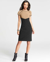 Ann Taylor Tipped Colorblocked Sheath Dress